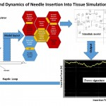 Mechanics and Dynamics of Needle Insertion Into Soft Tissue